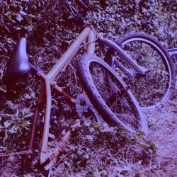 oldbike-BG-purple