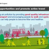 Thumbnail image of Public Health England Health matters infographics downloadable resource